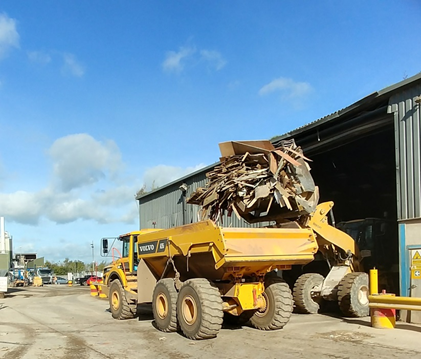Wood Collection from AJS and EMS in Torbay